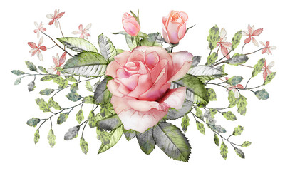 Flower arrangement of pink roses and abstract leaves.  Watercolor picture of a twig on a white isolated background.