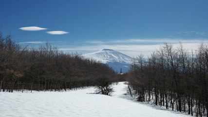 Wall Mural - Winter Etna Mount Landscape From Nebrodi Park, Sicily