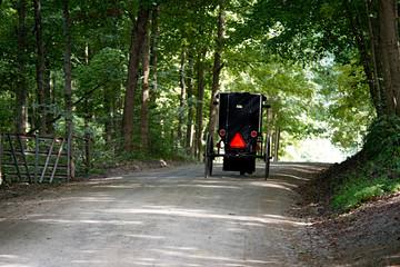 Ohio Buggy on Road