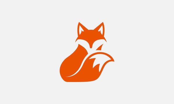 unique fox logo, fox illustration, vector