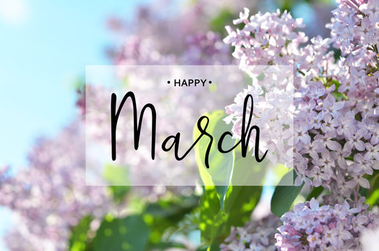 Inscription Happy March. Lilac flower. Spring background.