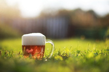 Glass mug light foam beer. Spring holiday in nature.