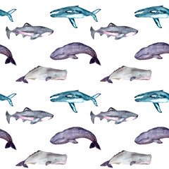 Seamless pattern with gray whales, shark tiger,blue whales, sperm whales. Can be used for wallpaper, web page background, surface textures.