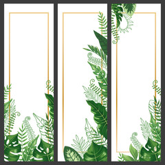 Wall Mural - Exotic leaves banner. Tropical monstera leaf, palm branch and vintage hawaii nature plants vertical banners vector background set