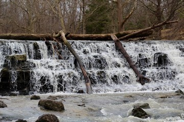 A view of the flowing waterfall in the forest.