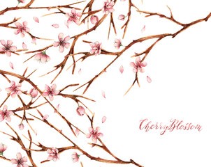Watercolor illustration,Cherry blossom,spring, flowers,branches,card for you,handmade