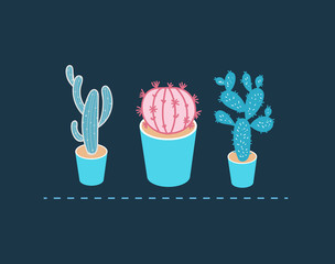 Cartoon picture set of flower in a vase, cactus in the different versions and in different colors. Isometric vector illustration.