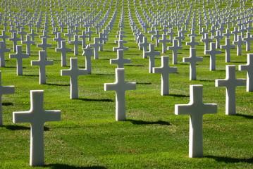 amerikanischer soldatenfriedhof Fotoväggar