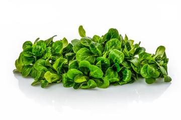 Ackersalat Feldsalat grün Haufen