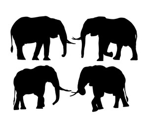 Set of silhouettes of elephants in safari, isolated on white background, vector
