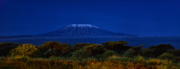 Panoramic, night scenery of Mount Kilimanjaro, snow capped highest african mountain, lit by full moon against deep blue night sky. Savanna view, Amboseli national park, Kenya.