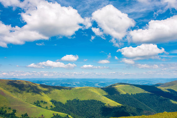 fluffy clouds above the mountain ridge. wonderful summer scenery with grassy alpine meadow. beautiful carpathian landscape