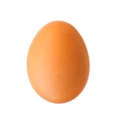 The one brown chicken egg isolated on white background