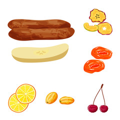 Fototapete - Vector design of fruit and dried  icon. Set of fruit and food  vector icon for stock.