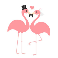 Pink flamingo set. Wedding couple. Exotic tropical bird. Black hat, veil, heart. Bride and groom. Happy Valentines Day. Cute cartoon character. Zoo animal. Flat design. White background.