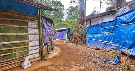 Stalls along the trail on Adams Peak (Sri Lanka).