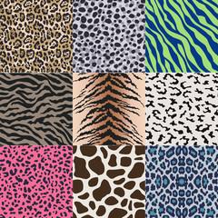 seamless animal skin pattern background set