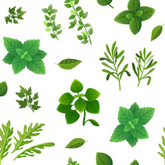 Spice seamless pattern. Food herbs and spices oregano green basil mint spinach coriander parsley dill and thyme. Vector endless texture spice for cooking, ingredient herbal and basil illustration