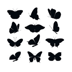 Set butterflies collection spring and summer black silhouettes on white background. Icons different shapes wings, for illustration, ornaments, tattoo, decorative design elements. Vector illustration.
