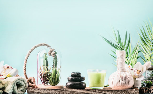 SPA setting with wellness equipment, massage tools , towels and succulent plants at blue background with palm leaves. Healthy lifestyle, calmness, modern beauty and body care concept.