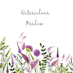 Wall Mural - Watercolor floral illustration. Flowering meadow. Wildflowers and herbs. Spring plants. Natural garden. Purple flowers. Hand painted