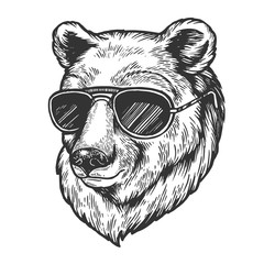 Bear animal in sunglasses sketch engraving vector illustration. Scratch board style imitation. Black and white hand drawn image.