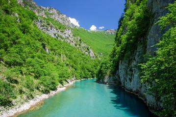 Foto op Aluminium Rivier Tara river canyon, Montenegro.