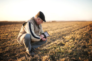 Farmers in the field use advanced technology.