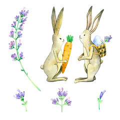 easter bunny with egg and carrot.Lavender, lavender branch, lavender flower