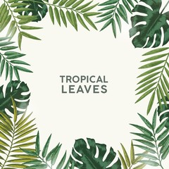 Square summer backdrop or background with frame or border made of green tropical foliage or exotic leaves of rainforest and jungle plants and place for text. Natural realistic vector illustration.