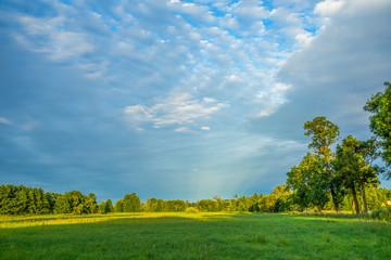 Piękne, niebieskie, jasne niebo, zielona trawa, piękny widok, spokój, łąka