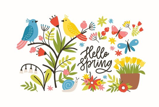 Seasonal horizontal banner template with Hello Spring phrase, blooming meadow flowers, cute pretty funny birds and butterflies on white background. Flat decorative floral vector illustration.