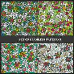Set of seamless patterns with flowers and leaves