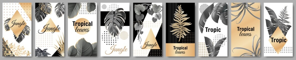 Set template banners dark and gold leaves of tropical exotic plants. Flyers jungle with palm trees and lianas. Vector 3d illustration with space for text.