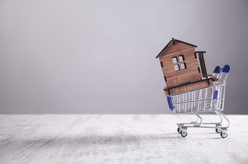 House model with shopping cart. Buying house
