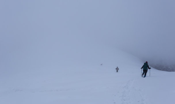 Young couple trekking together with their dog through the frozen mountains in Romania