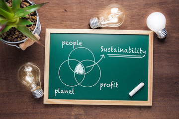 Sustainability Chart on Chalkboard