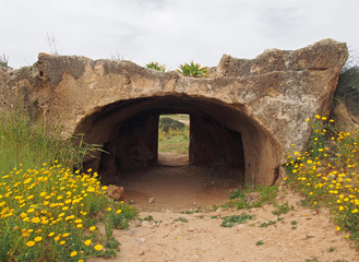 a large stone arch carved into rock with an entrance door at the tomb of the kings in paphos cyprus