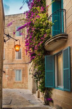 Mdina, Malta: traditional Maltese limestone house with bright purple flowers