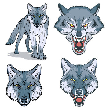 wolf vector set , vector graphic to design