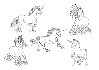 illustration fantasy magic unicorn drawing collection set for coloring with white background
