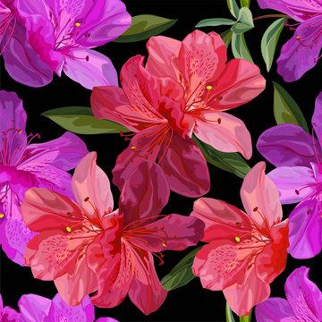 Floral seamless pattern with azalea vector illustration