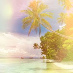 Beautiful background of paradise island -  landscape of tropical beach - calm ocean, palm trees, blue sky