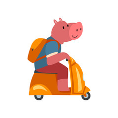 Pig with Backpack Riding Scooter, Funny Animal Character Using Vehicle Vector Illustration