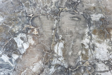 textures from fossilized wood
