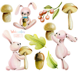 Collection, set of watercolor cute rabbits and autumn plants illustrations, hand drawn isolated on a white background