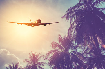 Airplane flying over tropical palm tree and sunset sky abstract background. Fototapete