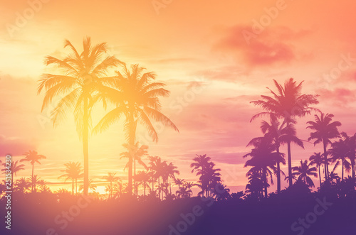 Wall mural Copy space of tropical palm tree with sun light on sky background.