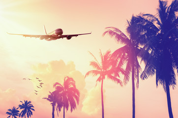 Fototapete - Airplane flying over tropical palm tree and sunset sky abstract background.