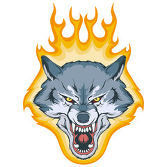wolf on fire, vector graphic to design